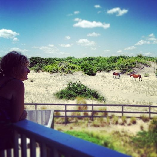 Good Day Sunshine Outer Banks Nc : Neighbor issues memory monday july outer