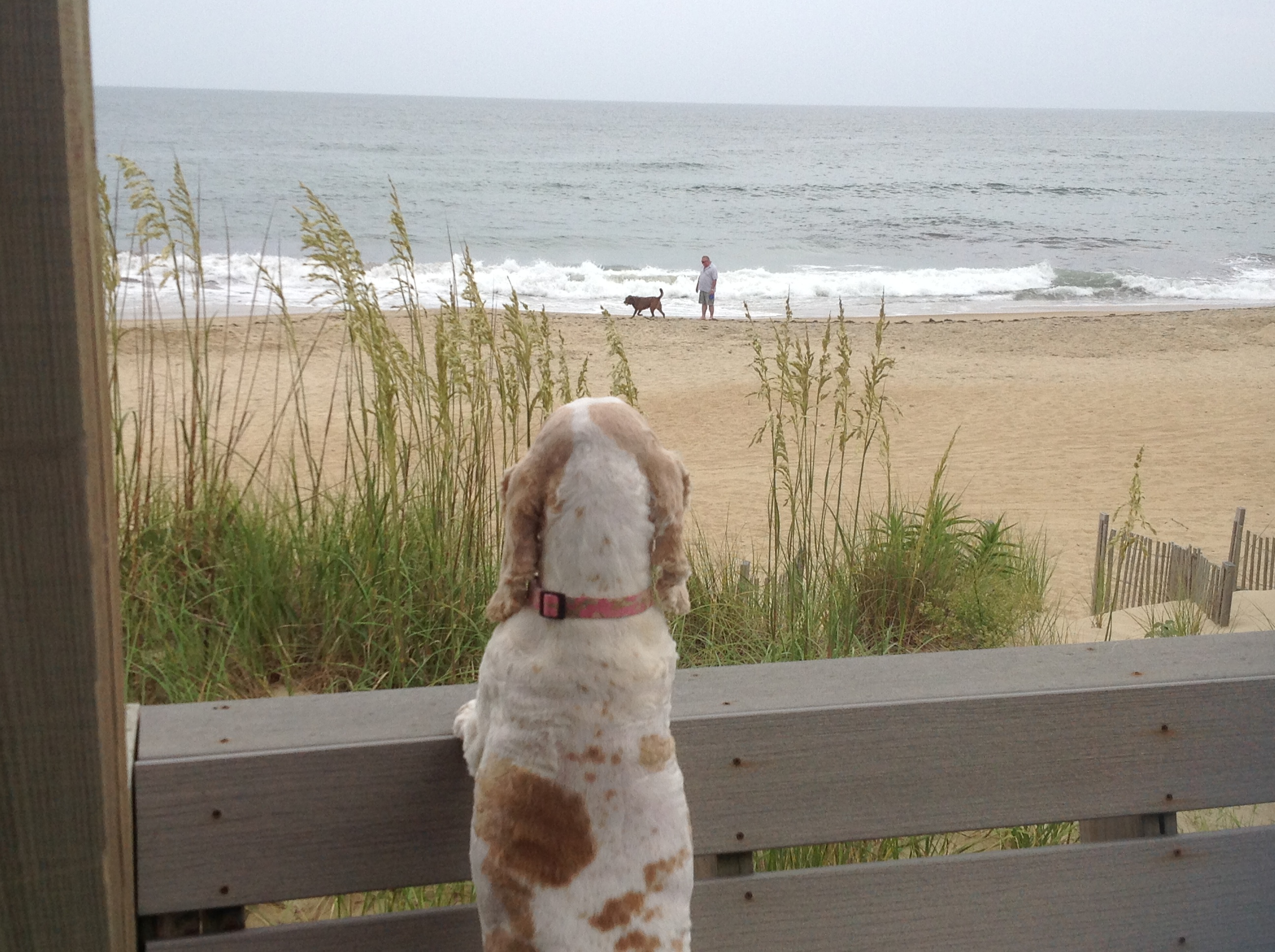 Good Day Sunshine Outer Banks Nc : Wait for me memory monday december outer