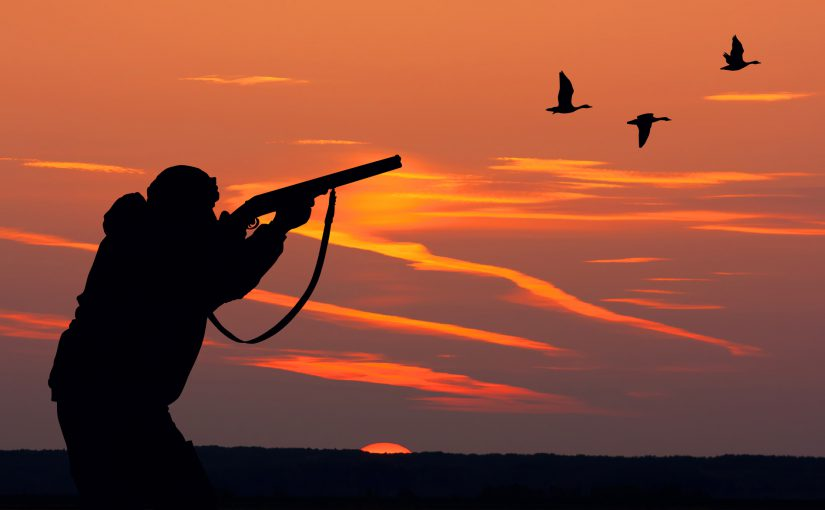 Duck Hunting in the Outer Banks of NC