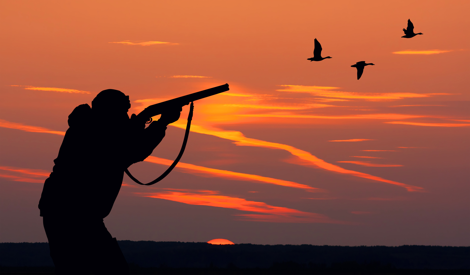 Scavenger Hunt List >> Duck Hunting in the Outer Banks of NC - Outer Banks Blue's ...